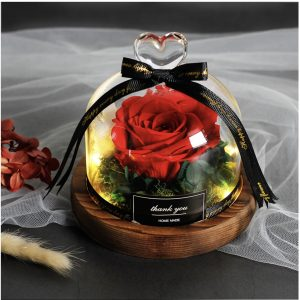 Rose Saint-Valentin sous dôme